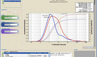 The Basics of NMR Core Analysis (Video)