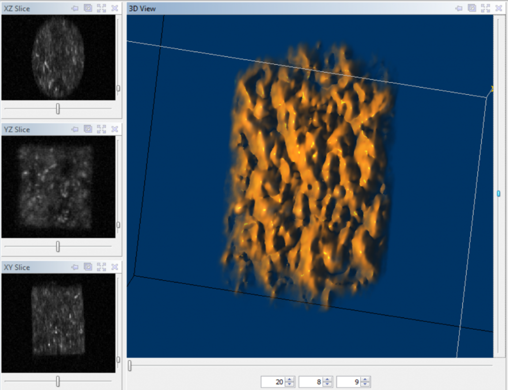 3D NMR Image taken using a 3D FSE sequence on a 12 MHz GeoSpec
