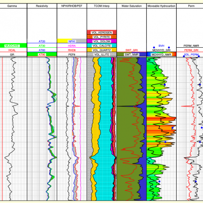 NMR Well Log Plot